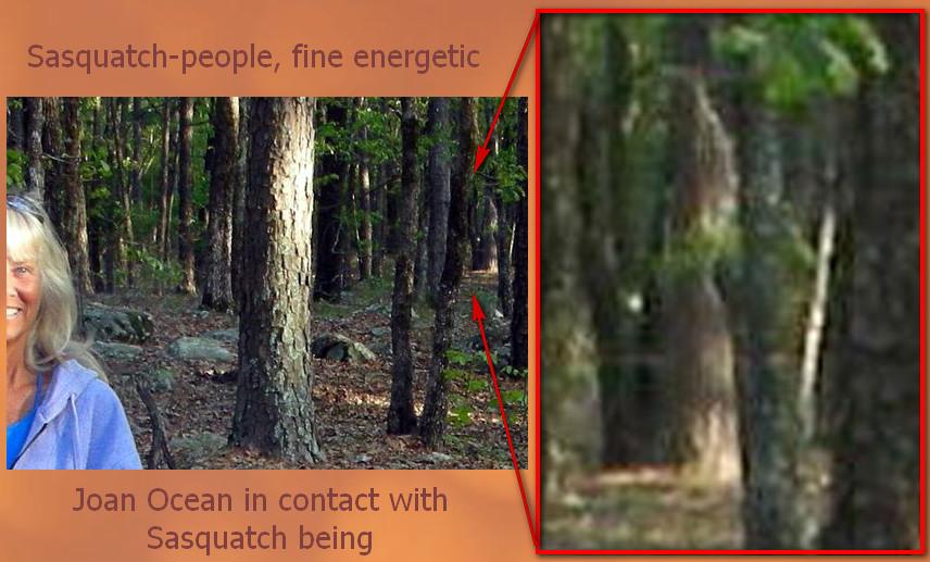 Een van de andere mensen die contacten onderhouden met Sasquatch-wezens is Joan Ocean. Deze indrukwekkende foto is door haar vrijgegeven. (klik op de foto voor een link naar haar site)