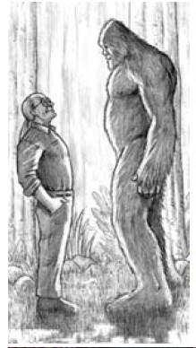 Verhoudingsplaatje van Kewaunee Lapseritis en de Sasquatch