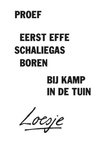 Loesje Schaliegas Henk Kamp