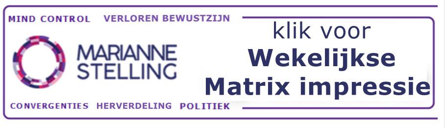 marianne stelling banner