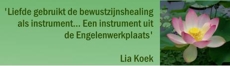 Banner Bewustzijnshealing Lia Koek