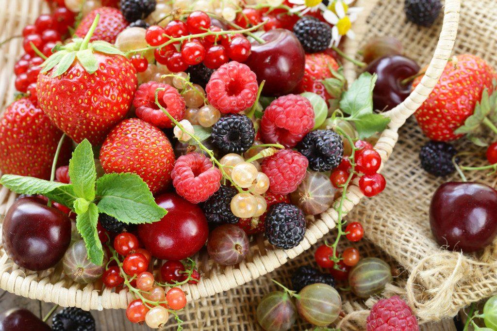 fruit-salvestrolen