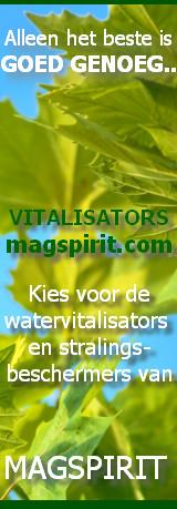 magspirit.nl