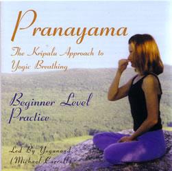 De laatste jaren komt Pranayama steeds meer in de belangstelling te staan als een natuurlijk manier om ons lichaam te voeden.