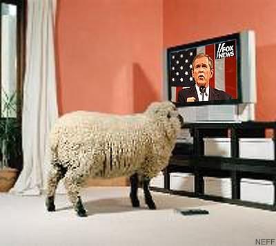 De mening van 'We the Sheeple' wordt met de pap-TV-lepel naar binnen gegoten..
