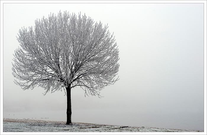 sneeuwlandschap5wl